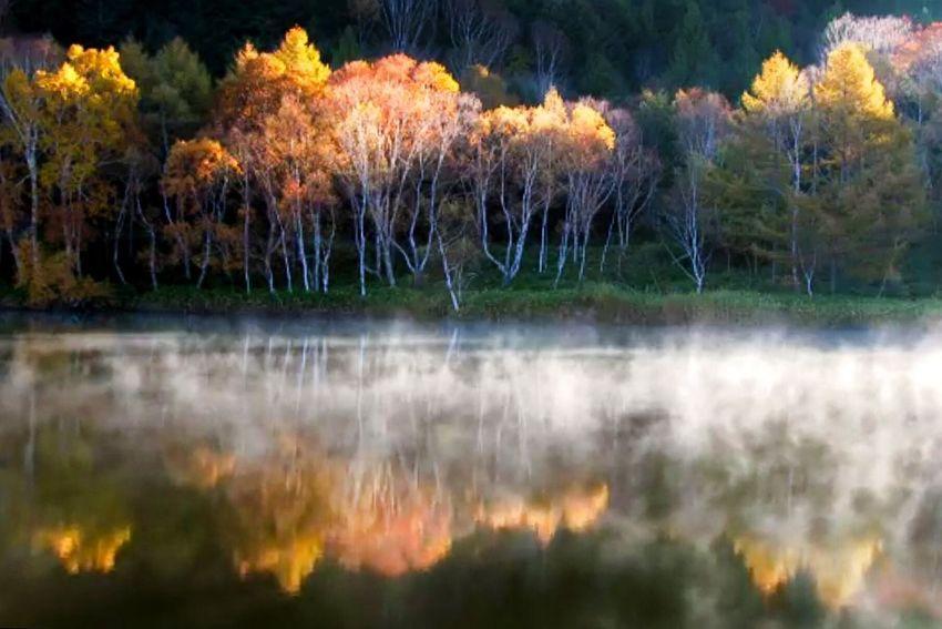 Autumn Pond Pond Autumn Fall Water Reflections EyeEm Water Shots Dedicate To @intreccio ISOPIX