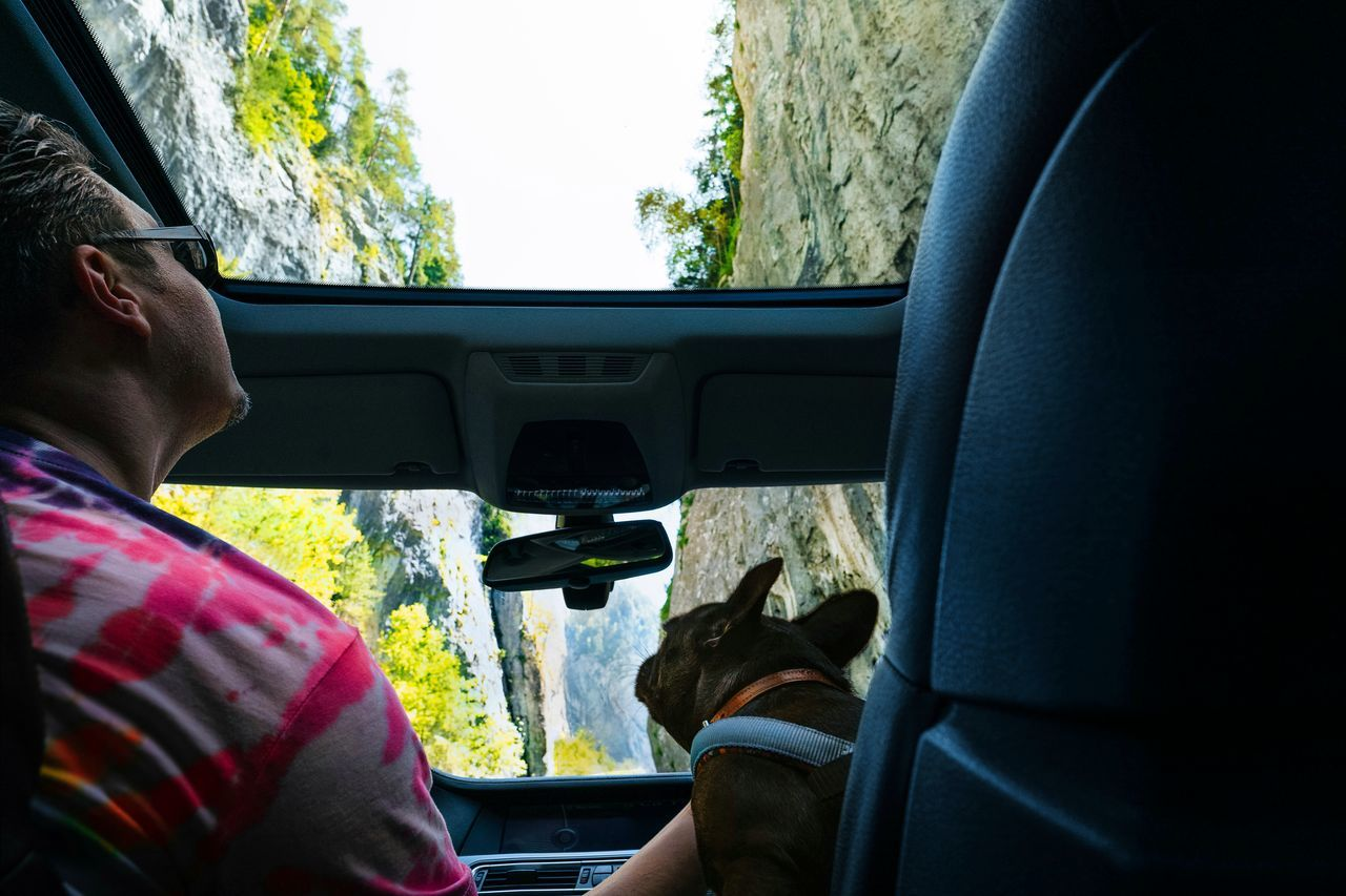 PORTRAIT OF MAN SITTING IN CAR SEEN THROUGH WINDSHIELD