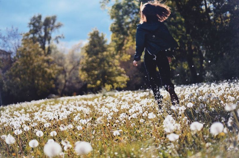 Dandelions Dandelion Dandelion Seed Day Energetic Energy Flower Löwenzahn Mind  Nature Nature Nature Beauty Nature Run Outdoors Peace Pusteblume Relax Relaxing Retreat Run Running Spring Vibes Wiese