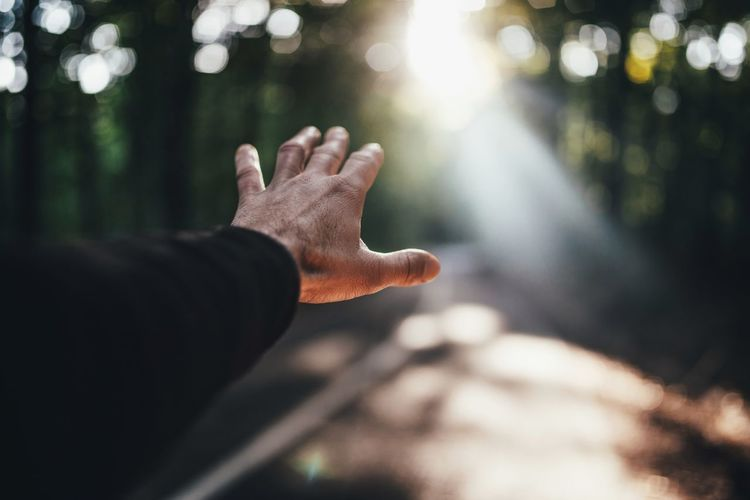 Cropped hand of man gesturing against sunlight streaming through trees in forest