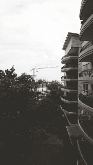 Edificios San Benito Urbanismo Ciudad San Salvador City