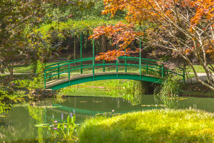Monet Bridge Arch Bridge Architecture Bridge Bridge - Man Made Structure Built Structure Canal Connection Day Engineering Footbridge Green Color Growth Nature Non-urban Scene Park Park - Man Made Space Plant Reflection River Scenics Tourism Tranquil Scene Tranquility Tree Water