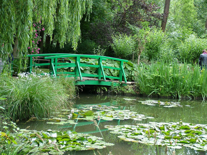 Monet's Japanese Bridge - Giverny Artists Garden & Homes Bridge Bridge project French Gardens Fuji Garden Photography Gardens Giverny Giverny, France. Green Green Bridge Impressionism In Photography Impressionist Landscape Monets Garden Nature Photography Nature_collection Travel Photography