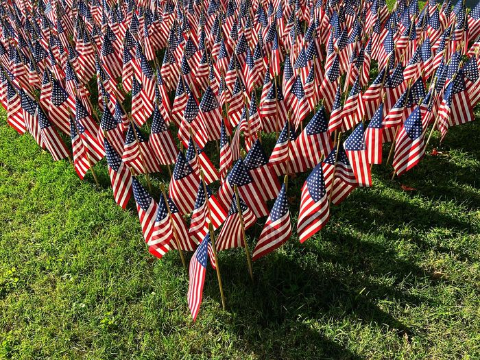 Full frame shot of flag on field