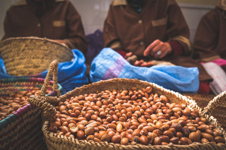 Moroccan women working with argan seeds to extract argan oil. essaouira, morocco.