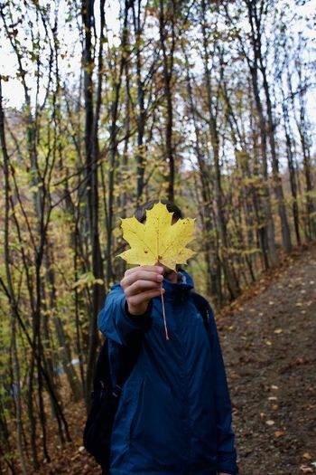 Person holding umbrella while standing on autumn leaves in forest