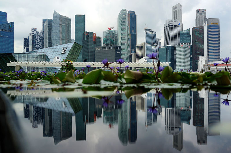 Singapore Cityscape Water Reflection Relection On Water Architecture Building Building Exterior Built Structure City Cityscape Financial District  Modern Nature No People Office Office Building Exterior Outdoors Reflection Singapore City Sky Skyscraper Tall - High Tower Urban Skyline Water Waterfront The Architect - 2018 EyeEm Awards
