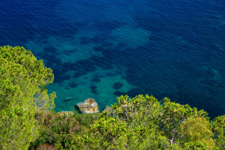Sony A7RII and 24-70mm f4 Zeiss Colourful Elba Island  Nature Travel Tuscany Colour Of The Sea Colourful Nature Colours Of Nature Elba Italy Portoferraio Relax Sea Sea Life Sea View Seascape Summer Travel Destinations View From Above