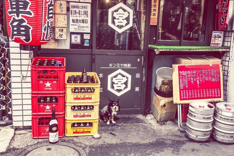 江古田 EyeEm 下町life Street Photography Dog Let's Go. Together. EyeEm LOST IN London