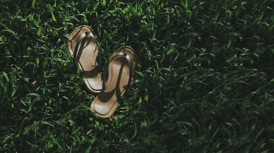 High Angle View Of Flip Flops In Grass