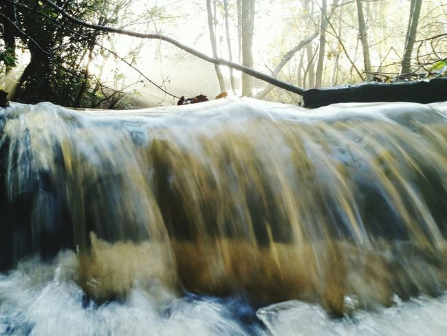 Arrowe Park Arrowe Brook Wirral Merseyside Waterfall