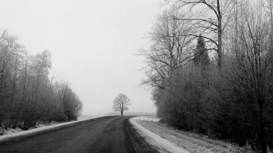 In Estonia in some winter days you can feel like living in the black and white movie. Tree Road The Way Forward Nature No People Outdoors Beauty In Nature Bare Tree Blackandwhite Silence Black And White Photography Transportation Day Tranquility Sky Passing First Eyeem Photo Let's Go. Together.