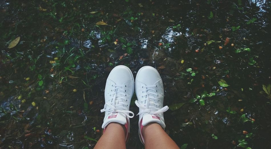 Human Leg One Person High Angle View Low Section Shoe One Woman Only One Young Woman Only Nature Young Adult Outdoors People Standing Human Body Part Adults Only Young Women AdidasLover❤ Human Hand Adidasoriginals Flower Nature Photography Day Adidas Superstar Freshness Beauty In Nature Eyes Closed