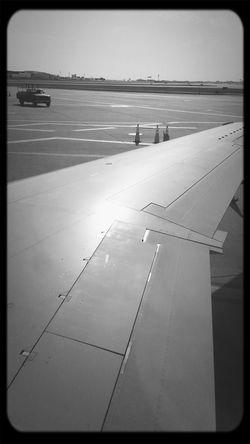 wing On The Run Flight ✈