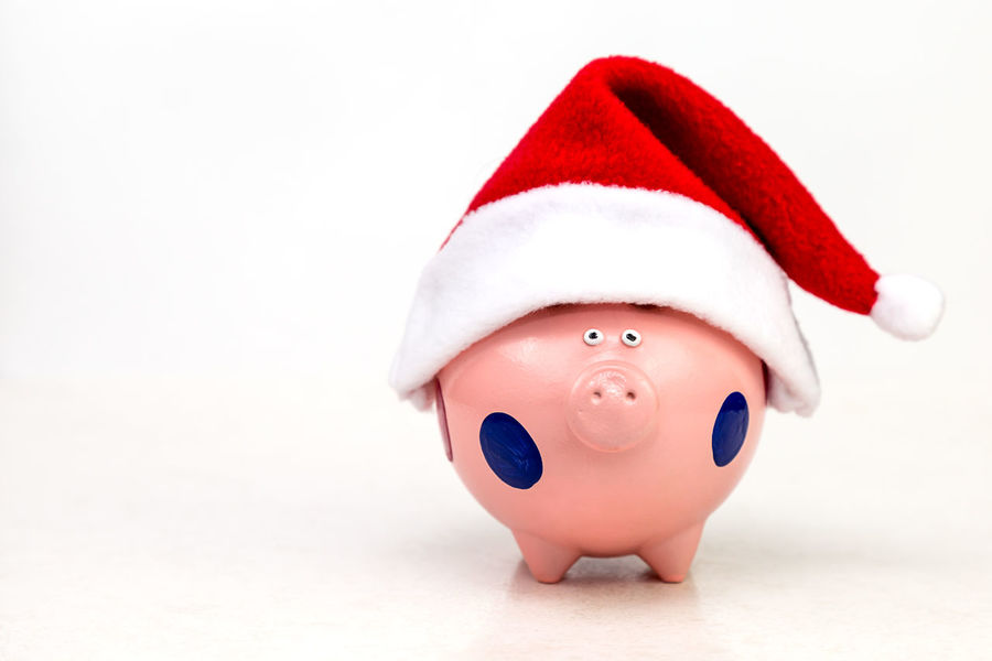 piggy bank in red cap Santa Claus on white background Profit Save Financial Piggy Money Box Rich Cap Santa Christmas Financial Accounting New Year MAS Xmas Holiday Red Cap Loan  Credit Salary Gift Toy Toy Pig Christmas Spirit Christmas Decoration Piggy Bank Finance Savings Business Business Finance And Industry Currency No People