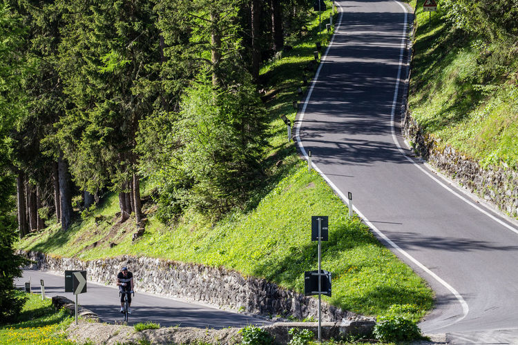 Lone cyclist on mountain road Beauty In Nature Curve Curve In The Road Cyclist Day Forest Grass Growth Italy Landscape Lone Cyclist Mountain Nature Outdoors Real People Road Steep Road Stelviopass The Way Forward Transportation Tree