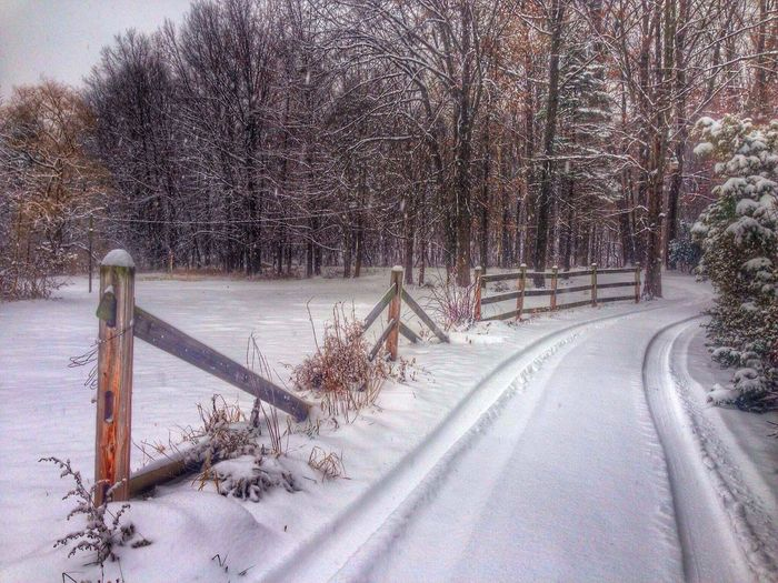 Vanishing Point Snow ❄ Holidays Woods Winter Happy Holidays & Season's Greetings