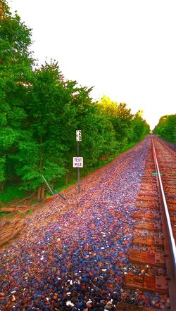 The Great Outdoors Eye Am Nature Leavin' On A Southern Train Signstalkers Trees And Sky Vanishing Point Lots Of Rocks