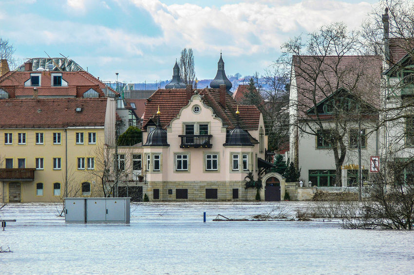 castle Pirnitz near Dresden, Elbe river with high flood Elbe River Architecture Bare Tree Building Exterior Built Structure City Cold Temperature Day High Flood High Water Level House Nature No People Outdoors Residential Building Sky Tree Weather Winter