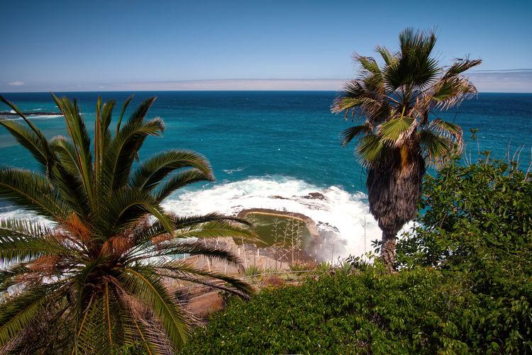 Tenerife's