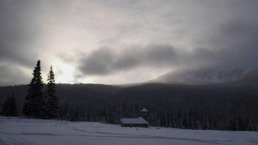 Winter edition Snow Landscape Forest Cloud - Sky Mountain Cold Temperature No People Sunset Mountains sureanu ski Winter Snow ❄ Ski Resort  Wintersports Popular Photos Wintertime