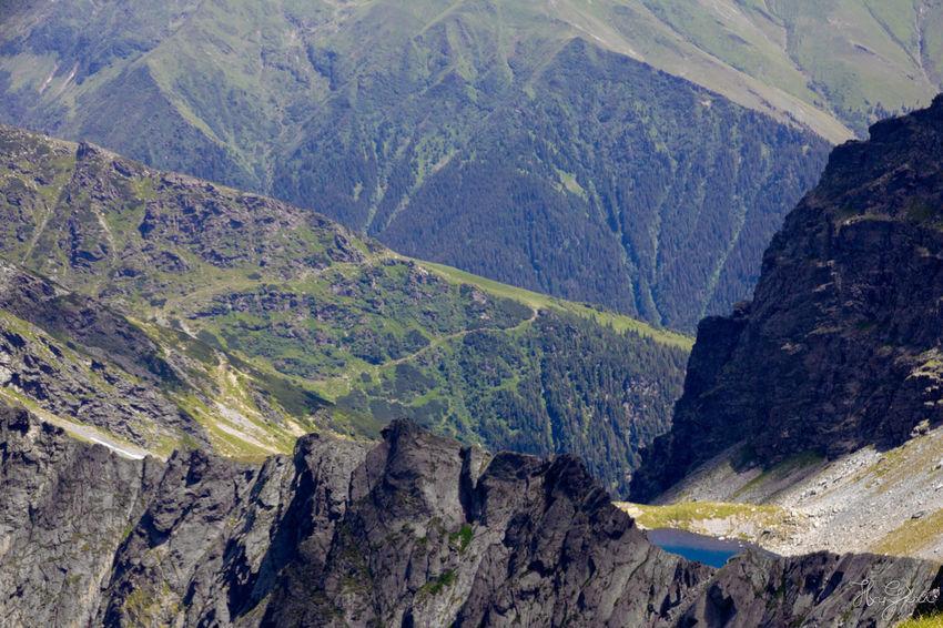 Peak Negoiu, Transylvania Beauty In Nature Day Landscape Mountain Mountain Range Nature No People Outdoors Scenics
