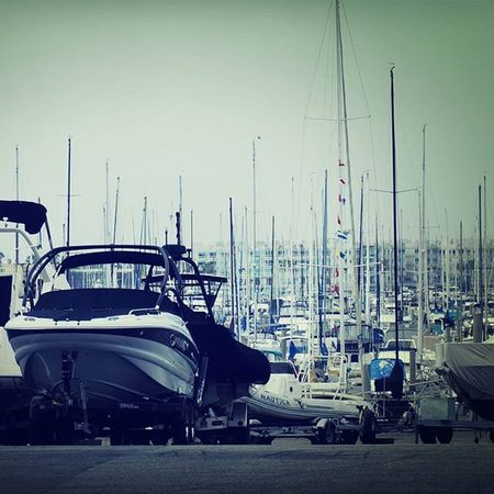 USA America Losangeles La Marinadelrey Beach Many Yacht Beautiful WOW AAA