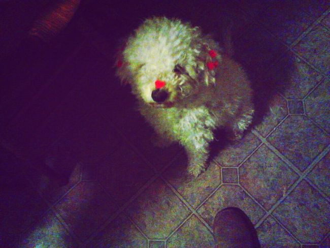 my little baby on valentines {:<3