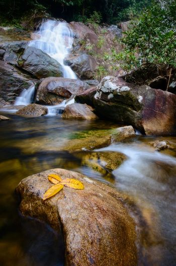 Natural waterfall at Gunung Stong state park, Kelantan malaysia. Wallpaper Background Malaysia ASIA Water Tree Motion Sky Flowing Water Long Exposure Waterfall Rock - Object Flowing Power In Nature