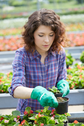 Young woman potting plants in greenhouse