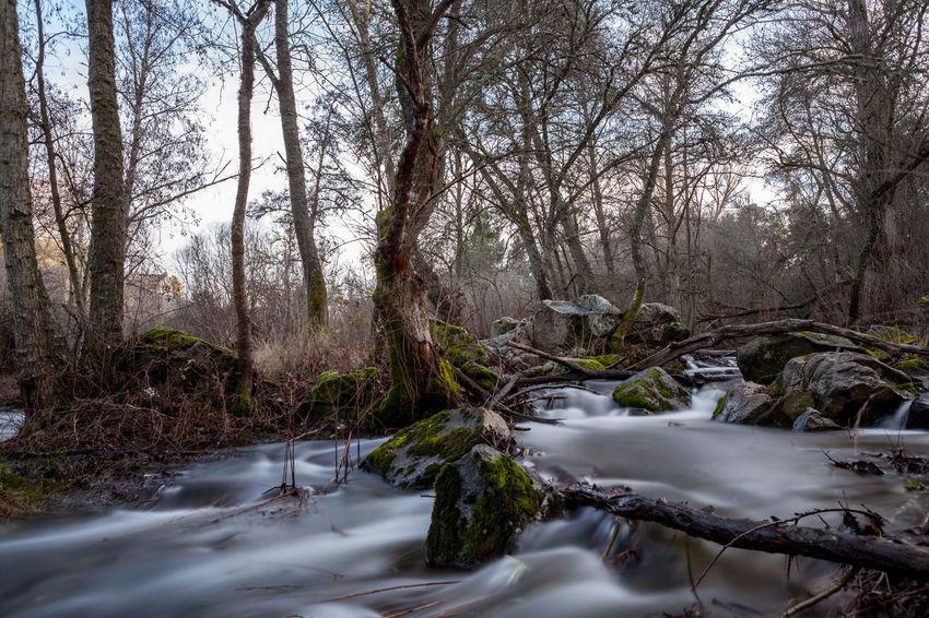 Cuellar River SPAIN travel Castillayleon