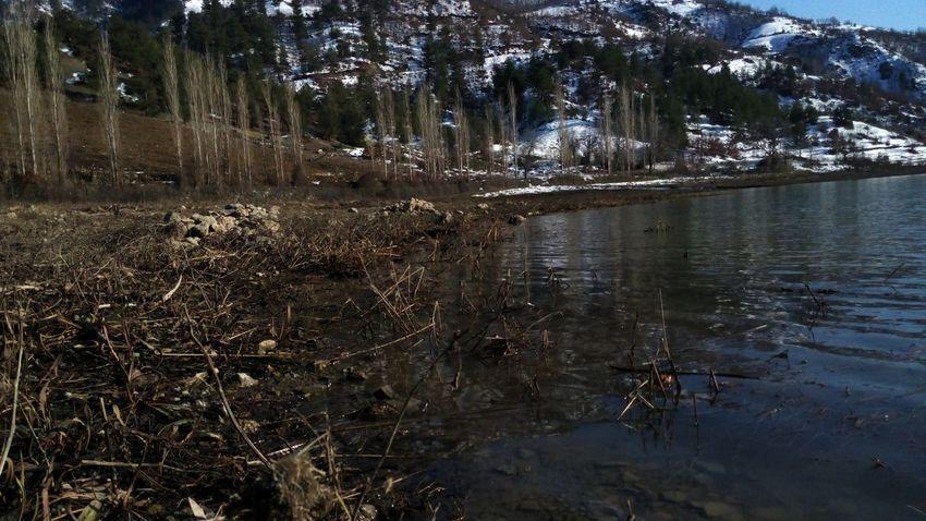 Bizim köyden bir kare