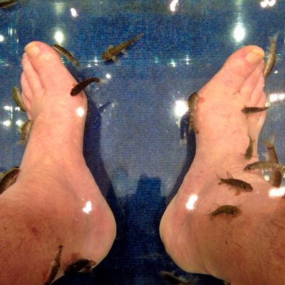 After a day of walking, it's time for a foot therapy at Doctor Fish... #TBEXathens #TBEX