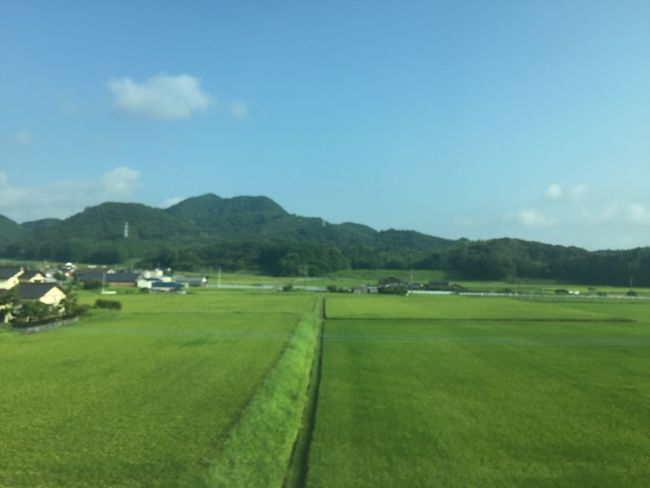 Agriculture Field Landscape Rural Scene Farm Day Nature Scenics No People Tranquil Scene Tranquility Beauty In Nature Japan Photography Japan Tranquility Agriculture Beauty In Nature Nature Green Color Grass Sky Outdoors Mountain Grass Tree Breathing Space
