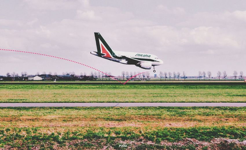Pogo Master. P202 Onephotoaday 365project2016 Getting Creative PS Touch Plane Airplane Alitalia Airport Runway Landing Schiphol Polderbaan Illustdraw Vscocam Camu IPhoneography EyeEm Best Edits Dutch Skies