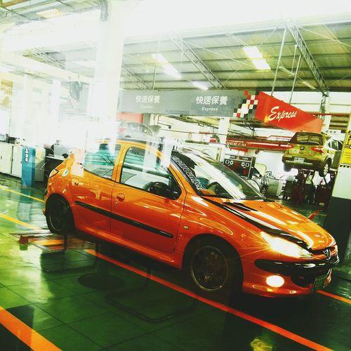 驗車 206 Peugeot Orange Orange978