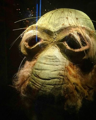 Starwars . great Relic , Practicaleffects , the HEAD of one of the Alien Species from the Original Films . in the StarWarsIdentitis Exhibition . At the Olympiapark . Munich München Bayern Bavaria Deutschland Germany . Taken by my SonyQx30 Sony Qx30 . معرض ستار_وورز ميونخ بافاريا المانيا .