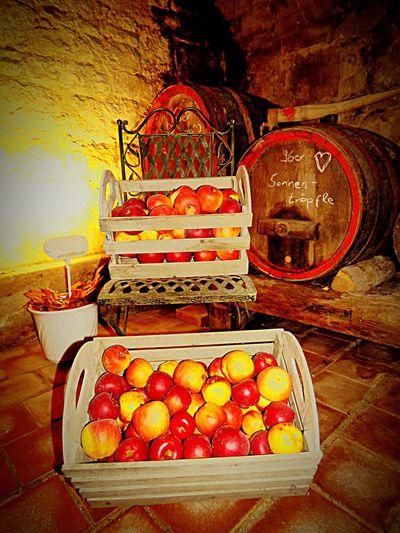 Deutschland Germany Retzstadt Weinprobe Wine Tasting PowerShot SX60HS Hanging Out Taking Photos