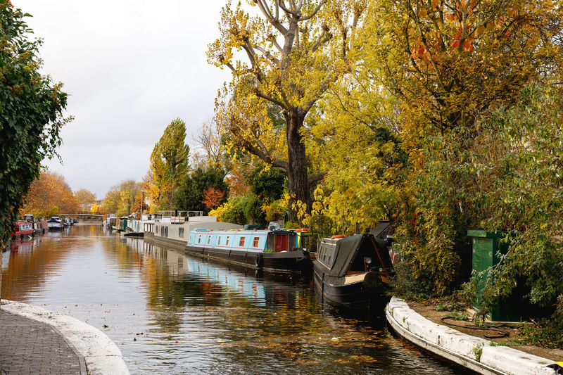 Autumn in London Tree Water Nautical Vessel Plant Transportation Mode Of Transportation Nature Day Autumn River Waterfront Moored Growth Incidental People Outdoors Sky Reflection Change Rowboat London Travel Travel Destinations Transportation Mode Of Transport Travel Photography Autumn Mood