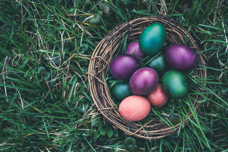 High Angle View Of Easter Eggs In Nest On Grassy Field