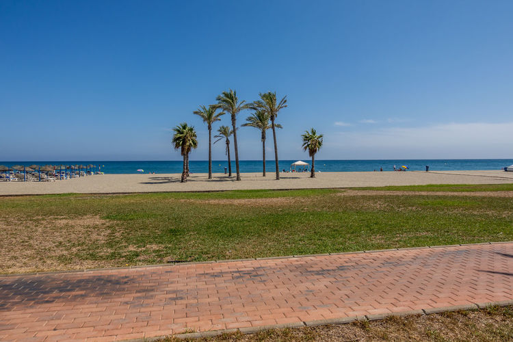 Sky Plant Land Water Palm Tree Sea Beach Tree Tropical Climate Nature Beauty In Nature Grass Tranquility Scenics - Nature Horizon Over Water Tranquil Scene Growth Horizon Day Outdoors No People Coconut Palm Tree Almería SPAIN