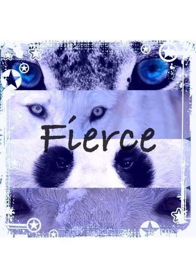 Stay fierce in what ever your doing