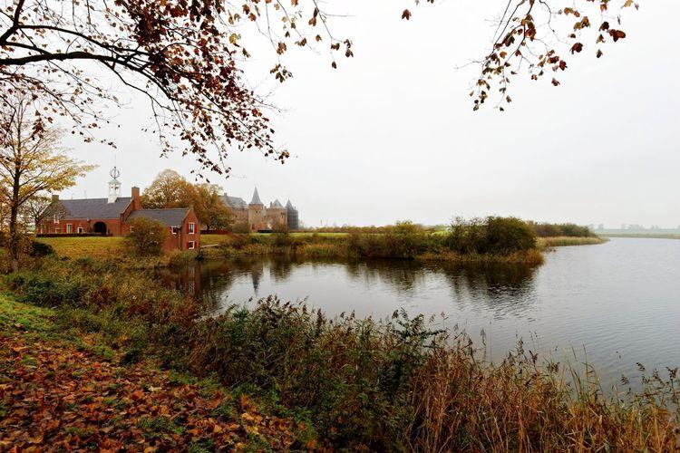 Castle Tree Autumn Muiderslot
