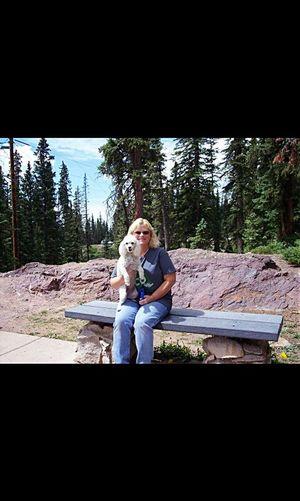 Maddie and me in Colorado. Rescuedogsarebest Enjoying Life EyeEm Best Shots Showcase: January Adventure Buddies My Dog <3 That's Me Hanging Out Feeling Thankful Rescuedog Who Rescued Who? She Is The Cutest Dog❤ Pet Corner Travel Buddy EyeEm Animal Lover Enjoying Life Enjoying The Day Hello World Love My Dog  On The Road Seeing What We Could See Loving Nature Seeing The Sights Travelers Rescued ❤