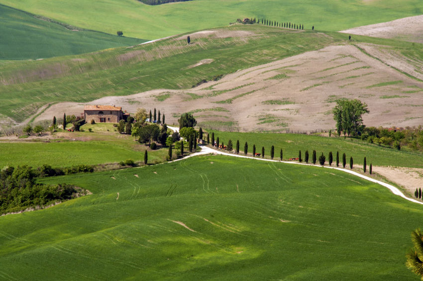 Tuscany Tuscany Countryside Architecture Countryside Cypress Trees  Italy Landscape Nature No People Outdoors Plant Siena Val D'orcia Val Di Chiana  Valley