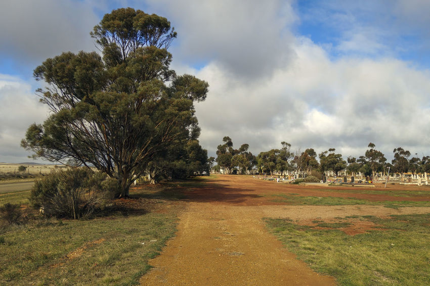 Cemetery. Australia Cemetery Beauty In Nature Cloud - Sky Day Direction Environment Field Grass Growth Land Landscape Nature No People Outdoors Plant Road Scenics - Nature Sky Tranquil Scene Tranquility Tree