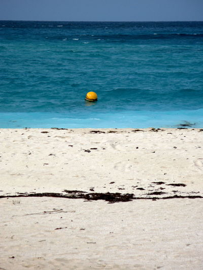 Beach Beauty In Nature Blue Day Horizon Over Water Nature No People Outdoors Sand Scenics Sea Sky Tranquil Scene Tranquility Water Frenchwestindies Stbarth Stbarths Landscape_photography