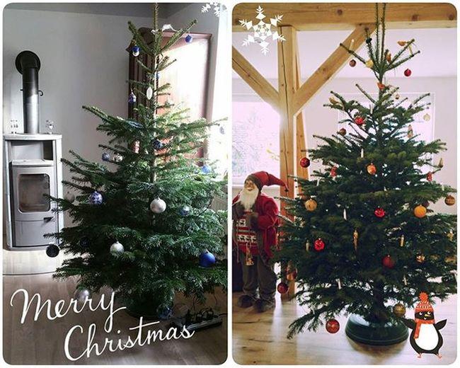 Fröhliche Weihnachten 🎄✌ Merryxmas