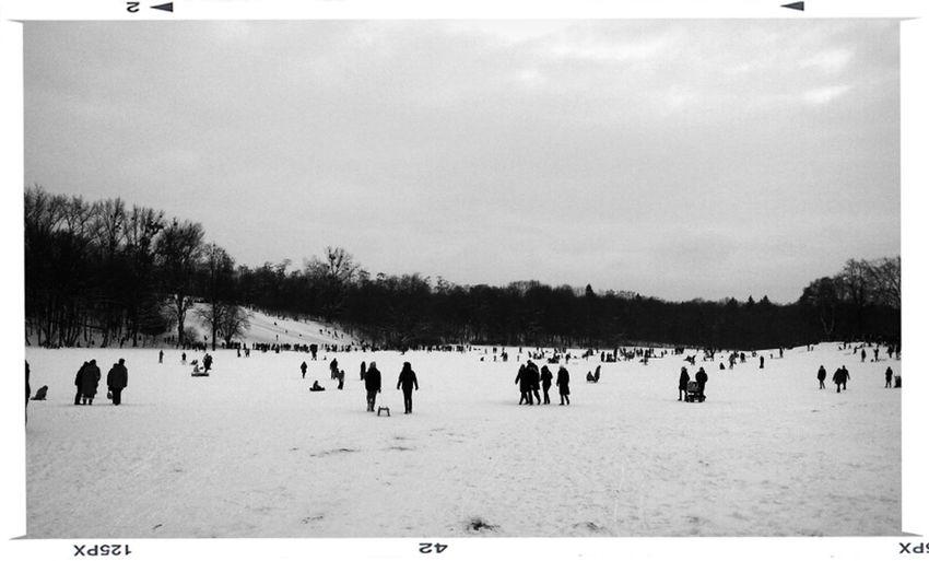 Snow Schlittenfahren Wintervergnügen