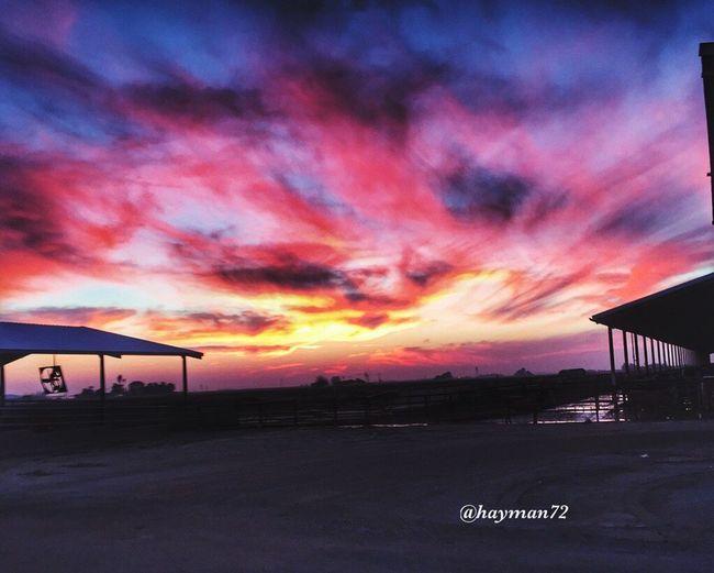 Dairy Rural Landscape Rural Scenes Sunset Sunset_collection Visalia California Love